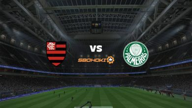 Photo of Live Streaming  Flamengo vs Palmeiras 11 April 2021